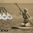Now  introducing the new 2011 power wave , 100 % glass fiber paddles.  For those whom enjoy SUP , and want to have a great paddle performance without paying  premium price for...